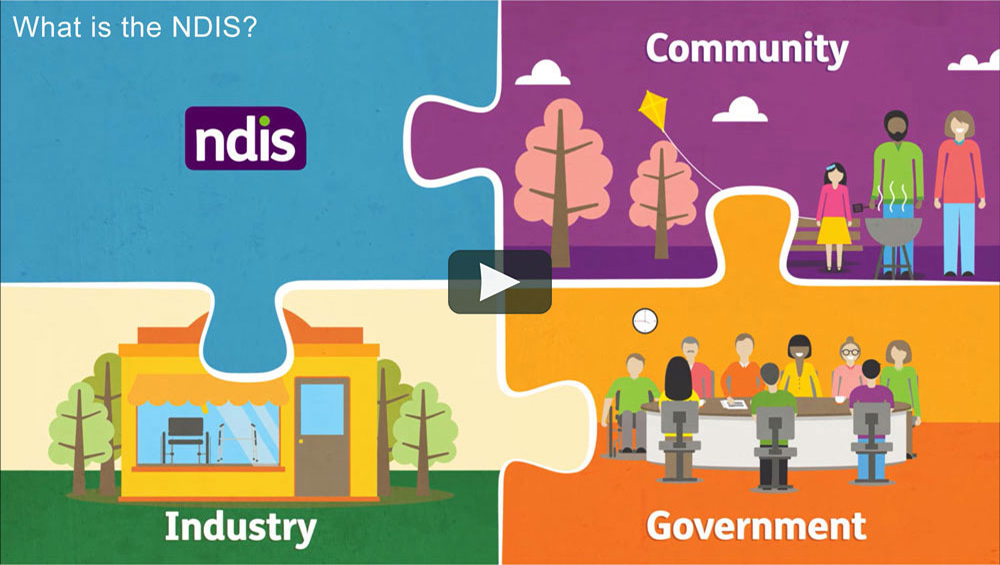 What Is NDIS